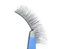 False lashes and blue pincers Royalty Free Stock Photography