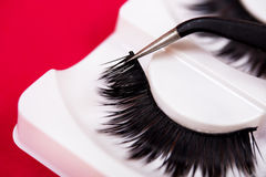 False lashes and  pincers, close up on red background Royalty Free Stock Photography