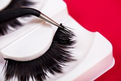 False lashes and  pincers, close up on red background Stock Photo