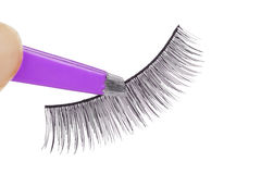 False lashes and pink pincers Stock Image