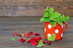 False shamrock with heart shaped leaves and red rose petals. On wooden background royalty free stock photo
