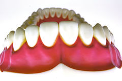 False teeth Royalty Free Stock Photo