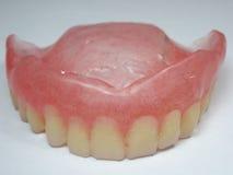 False teeth Royalty Free Stock Photo