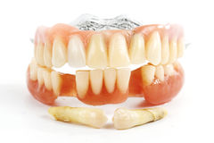 False teeth prosthetic Stock Images