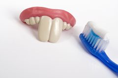 False teeth and toothbrush Stock Image
