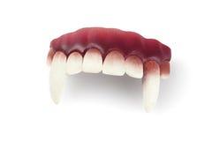 False Vampire Teeth. On White Background stock images