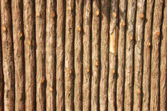 False wooden wall. Wooden wall make of cement Royalty Free Stock Photography