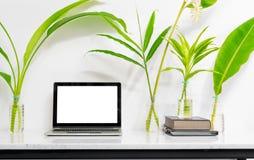 Falsk övre bärbar dator med tillförsel och växt på marmorskrivbordtabellen royaltyfria foton
