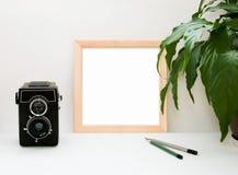 Falsk upp träram, gammal kamera, växt och blyertspennor Inre hem- fyrkantig affischmodell med träramen och gröna sidor på vi royaltyfri fotografi