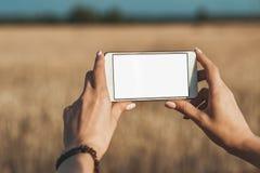 Falskt upp av smartphonen i händerna av flickan, på bakgrundsfältet fotografering för bildbyråer