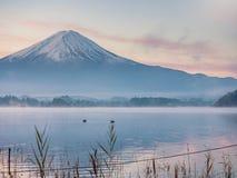 Falta de definición de movimiento a partir del pato el dos que flota en primero plano y Fuji del lago Imágenes de archivo libres de regalías