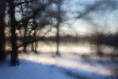 Falta de definición del árbol del invierno a través del parque Imagen de archivo