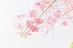 Falta de definición suave de flores rosadas Imagen de archivo