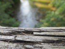 Falta de definición texturizada de madera y del fondo Imagen de archivo