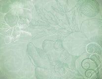 Falta de definición verde Imágenes de archivo libres de regalías