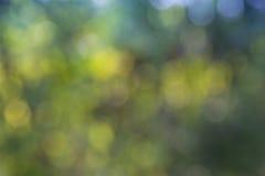 Falta de definición verde Imagen de archivo libre de regalías