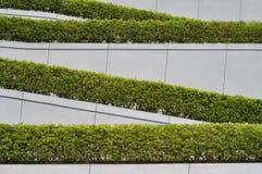 Falten Sie gesunkenen Zaun und Grünpflanze Stockbilder
