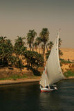 Egipt. Nil przy Aswan Fotografia Royalty Free