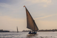 Faluka na Nil rzece Obrazy Stock