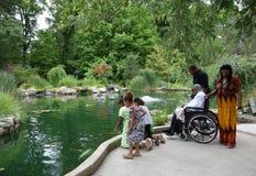 Família afro-americano que olha o peixe dourado na lagoa. imagem de stock