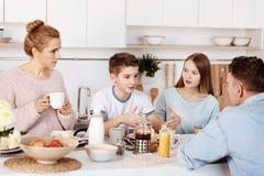 Família agradável que tem a conversação vívida fotografia de stock royalty free