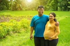 Família asiática do campo que espera o nascimento do bebê fotos de stock