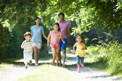 Família asiática que aprecia a caminhada no campo imagem de stock