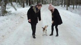 Família bonita nova que tem o divertimento com um cão no homem e na mulher da floresta do inverno que andam com o lebreiro na flo filme