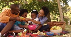A família bonito está comendo em um parque vídeos de arquivo