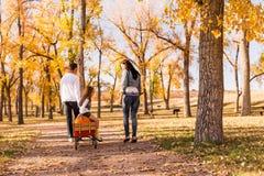 Família com abóboras Imagem de Stock