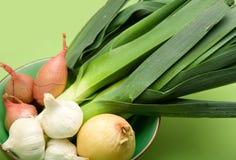 Família da cebola na bacia Imagem de Stock