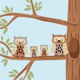 Família da coruja ilustração do vetor