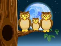 Família da coruja com fundo da Lua cheia Imagens de Stock