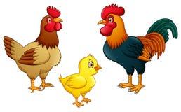 Família da galinha no fundo branco ilustração stock