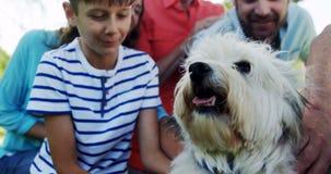 família da Multi-geração que joga com seu cão vídeos de arquivo