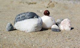 Família da pedra em uma praia Fotos de Stock Royalty Free