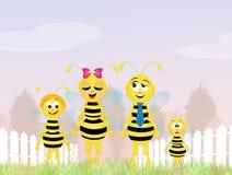 Família das abelhas Imagens de Stock