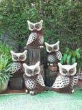 Família das corujas no jardim Fotografia de Stock