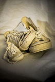 Família das sapatilhas Foto de Stock Royalty Free