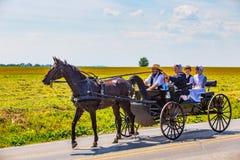 Família de Amish no vagão preto fotos de stock