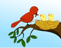 Família de pássaro Imagens de Stock Royalty Free