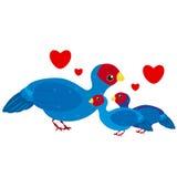 Família de pássaro bonito dos desenhos animados Imagem de Stock
