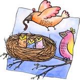 Família de pássaros ilustração royalty free