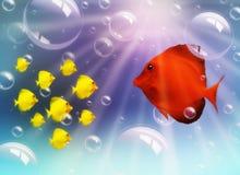 Família de peixes Imagem de Stock