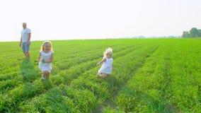 A família de quatro pessoas feliz nova vai em um campo verde com duas crianças A família com childs, crianças que andam no verão  vídeos de arquivo