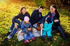 Família de quatro pessoas nova feliz que tem o piquenique no prado no dia de verão imagens de stock royalty free