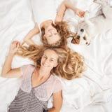 Família de três nova que anda com cão Imagem de Stock