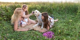 Família de três nova que anda com cão Foto de Stock Royalty Free