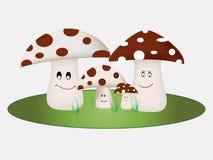 Família do cogumelo Imagens de Stock