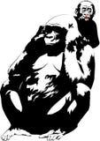 Família do gorila fotografia de stock royalty free